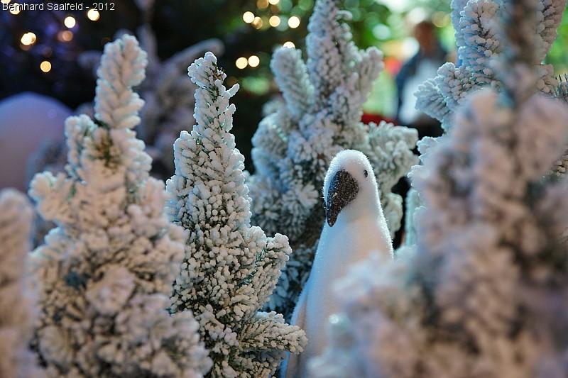 Pinguin im beschneiten Gebüsch
