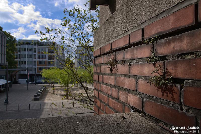 Kurt-Hackenberg-Platz Köln - Bernhard Saalfeld